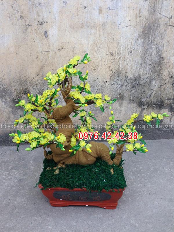Goc bonsai mai dao the rong tai Quynh Loi