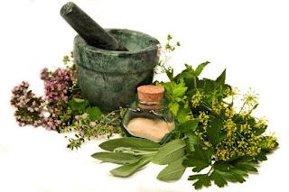 Pengertian Obat Herbal Tasly ICP Capsule
