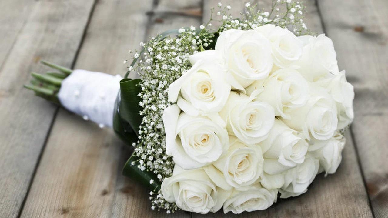gambar bunga mawar putih untuk pengantin