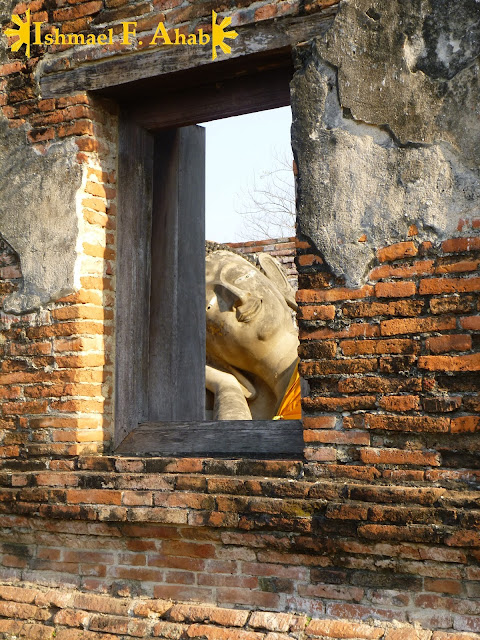 Buddha peeking in Ayutthaya Historical Park