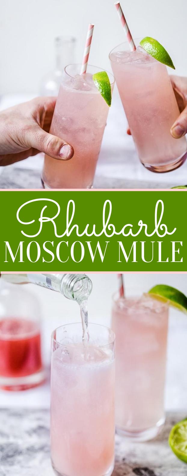 RHUBARB MOSCOW MULE #drinks #freshdrink #cocktails #vodka #summerdrink