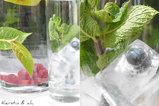 Infused Water und Blaubeeren in Eiswürfeln