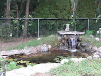 Overview of the pond with the waterfall on.