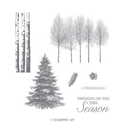 Heart's Delight Cards, Winter Woods, SRC - Winter Woods, Stampin' Up!