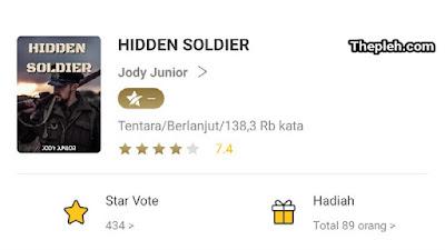 Novel Hidden Soldier