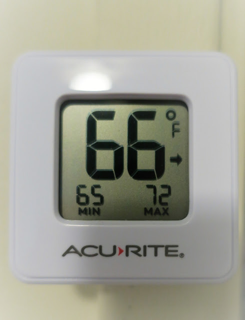 Room temperature, Birmingham, Alabama. January 2021.