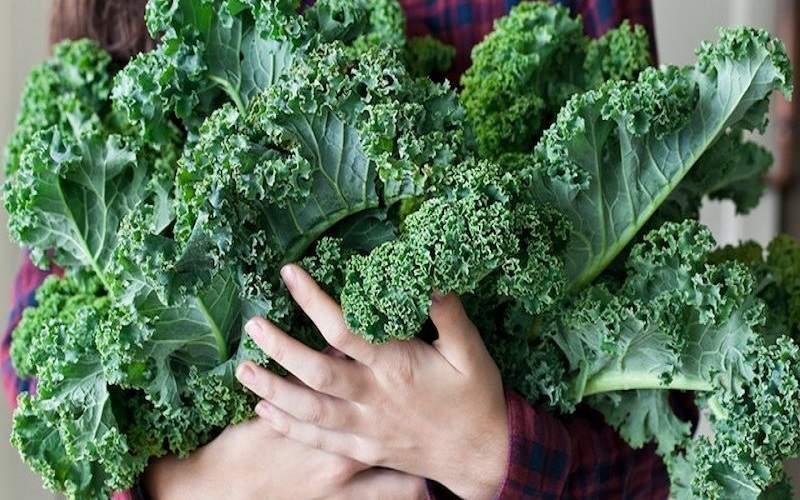 13 Benefícios da Kale (Couve-de-Folhas) à Saúde