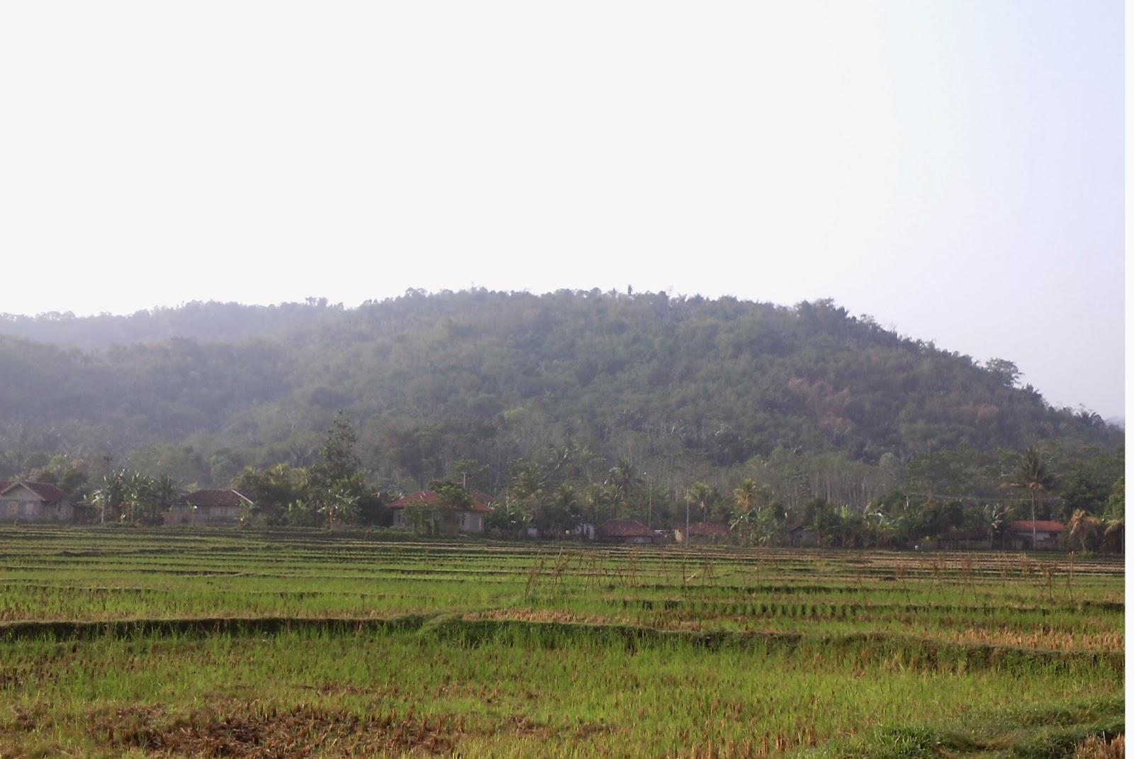 Rute Perjalanan Bekasi ke Cianjur Lewat Jonggol