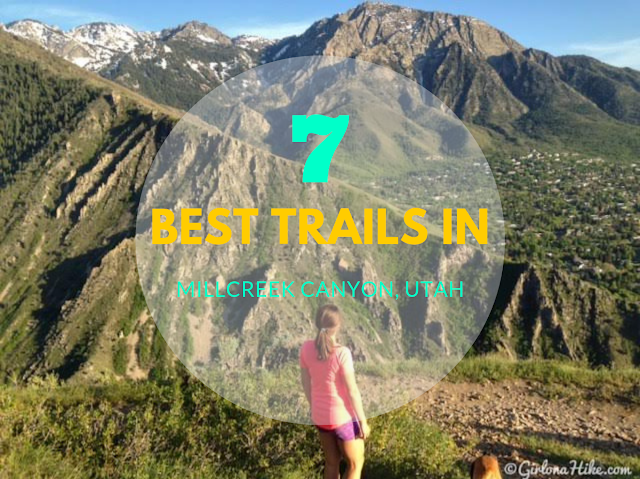 The 7 BEST Trails in Millcreek Canyon, Utah