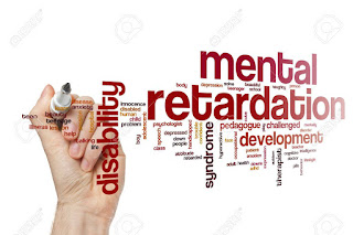 Mental retardation (MR) is one of the most commonly observed neuropsychiatric disorders