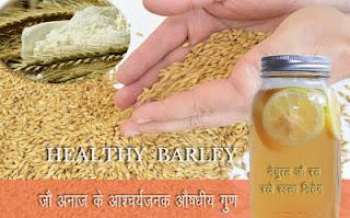 बहुमूल्य स्वास्थ्यवर्धक जौ Jau, Barley in Hindi, Jau ke fayde, जौ के फायदे, barley health benefits, barley nutrition, जौ के पानी के फायदा, जौ के स्वास्थ्य लाभ, jau ke labh, jao ke gun, जौ के गुण, Jou ke Fayde, जौ के औषधीय गुण तथा स्वास्थ्य वर्धक लाभ