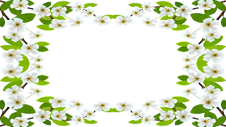 Moldura withe flower - 1 foto png