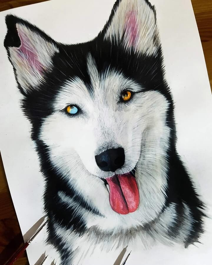13-Husky-with-Heterochromia-Kyle-Duca-Animal-Paintings-www-designstack-co