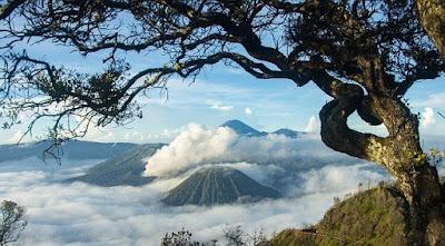 Dampak Positif Negatif dari Gunung Berapi Aktif Untuk Pertanian di Indonesia