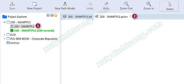 Cách sử dụng phần mềm SMARTPLS