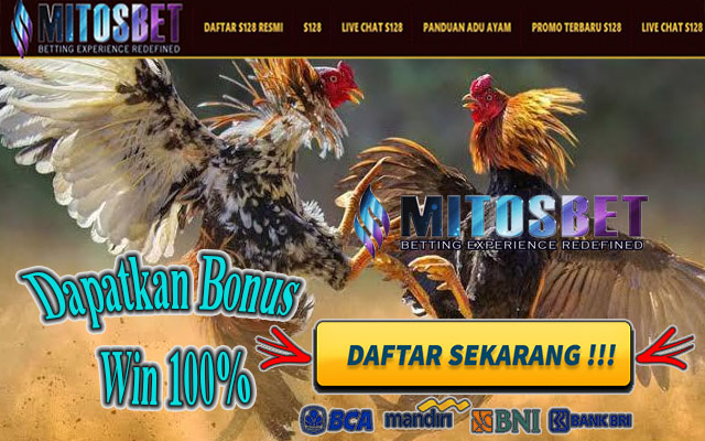 Sabung Ayam Online S128