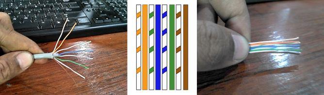 Pengaturan Posisi Kabel UTP Straight, Cara Crimping Kabel LAN