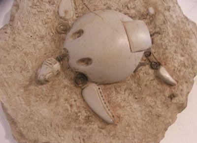 Escultura de tortuga  simulando fósil de robot