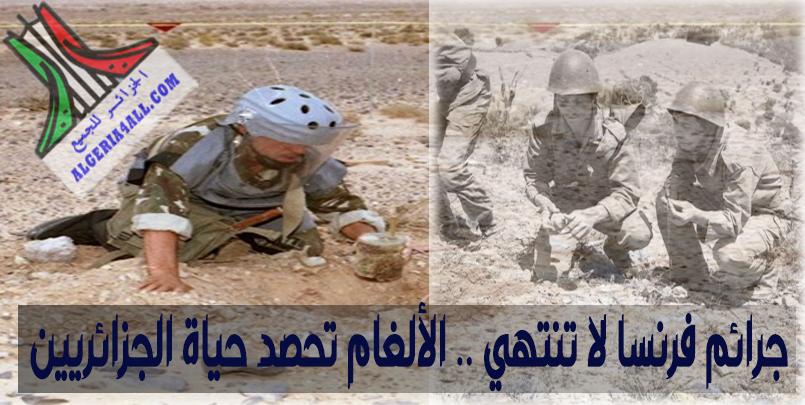 جرائم فرنسا ,جرائم فرنسا: 7300 ضحية في الجزائر بسبب الغام تعود لحرب التحرير الوطني -الجزائر.،عدد ضحيا الالغام في الجزائر؟ شال و موريس