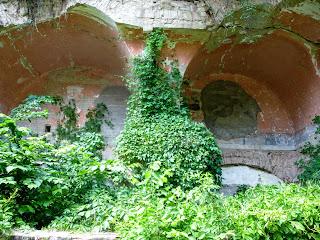 Тараканівський (Дубенський) форт. Дикі ліани та борщівник проникли у всі перекриття споруди