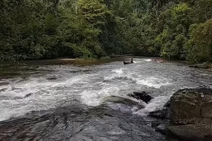 Sungai Batang Gansal Indragiri Hulu, Segarnya Air Taman Nasional Bukit Tiga Puluh