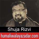 https://www.humaliwalayazadar.com/2019/09/shuja-rizvi-nohay-2020.html