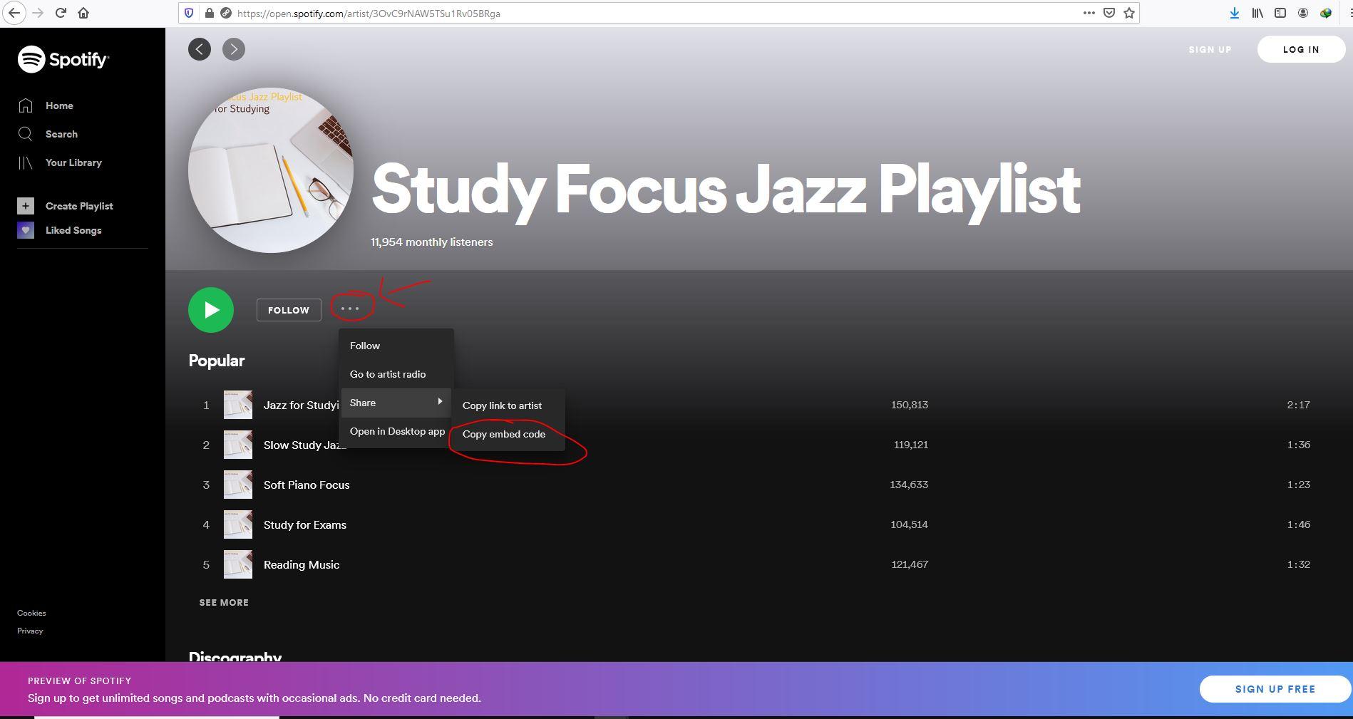 playlist spotify..