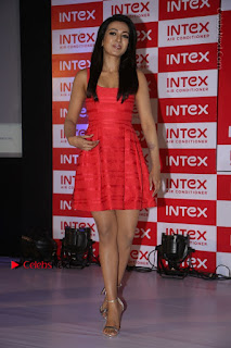 Actress Catherine Tresa Unveils Intex Air Conditioners  0205.jpg