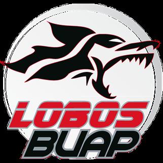 2019 2020 2021 Plantilla de Jugadores del BUAP 2018-2019 - Edad - Nacionalidad - Posición - Número de camiseta - Jugadores Nombre - Cuadrado