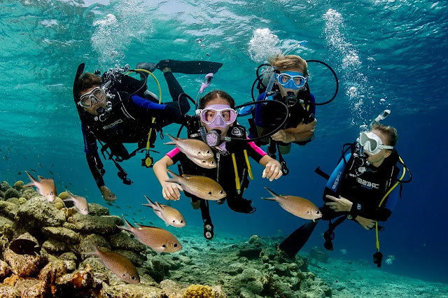 2. Scuba diving on the coast of Sal  in Cape Verde