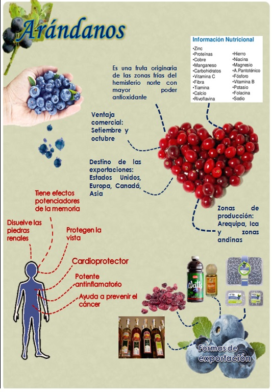 Beneficios de los arándanos