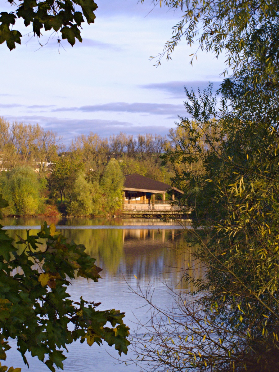 #297 Pentax 03 Toy Lens Telephoto f5.6 3.2mm – Herbstimpressionen am Aileswasensee (5)