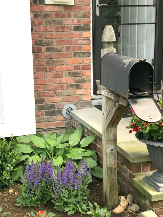 Mailbox at the front door with garden plants
