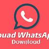 Fm Whatsapp 8.35 Download Mediafıre
