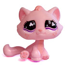 Littlest Pet Shop Singles Kitten (#720) Pet