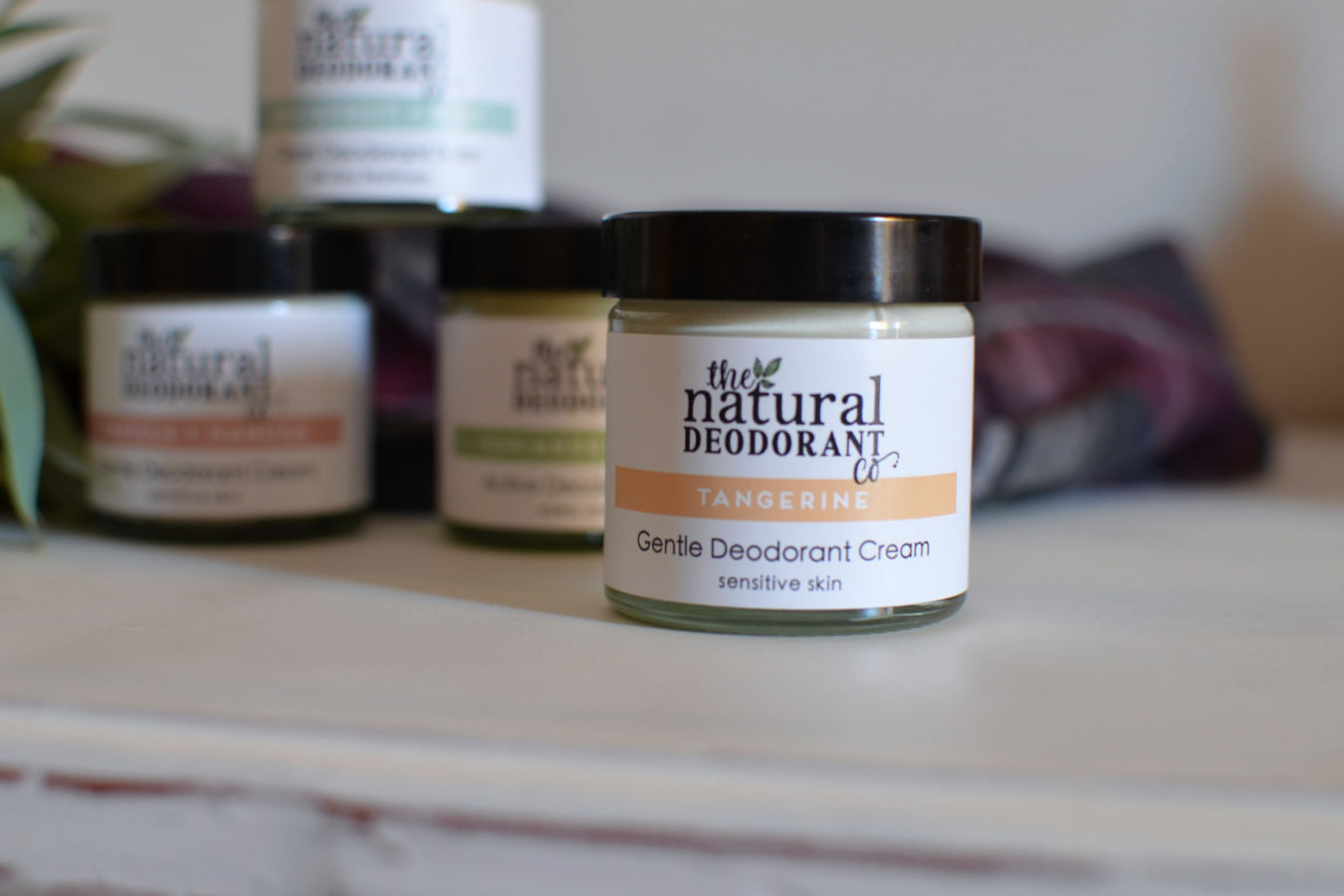 Desodorantes naturales The Natural Deodorant Co Branch and root