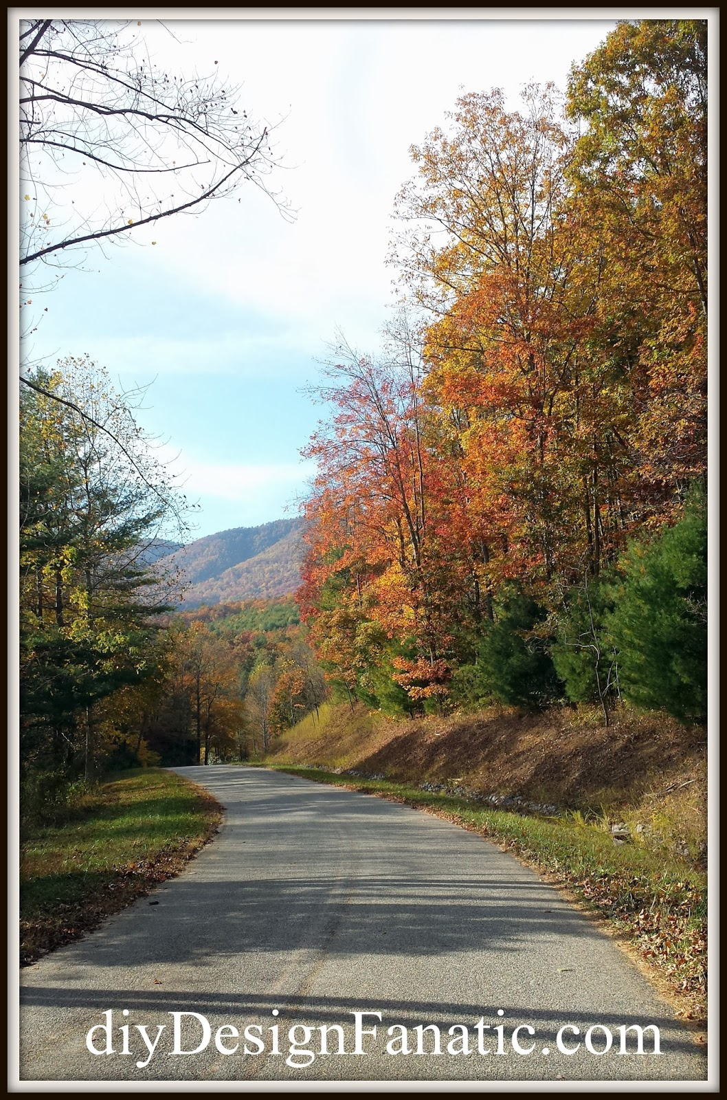 seize the day, fall colors, mountain road