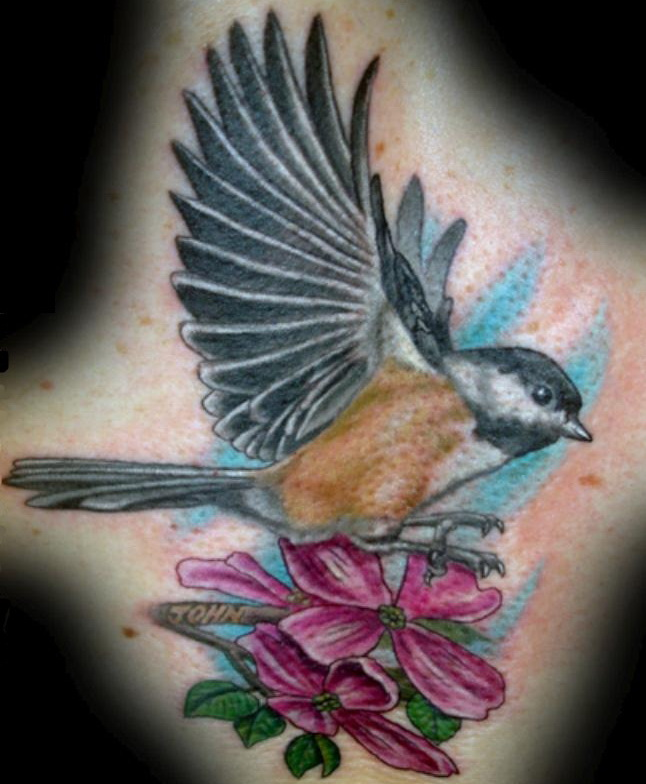 Birds Tattoos Illustrations: Bird Tattoo Designs