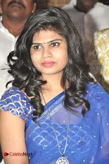 Happy Birthday Telugu Movie Audio Launch  0016