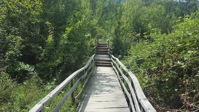 Kastamonu Küre Dağları Milli Parkı Patika Yollar...
