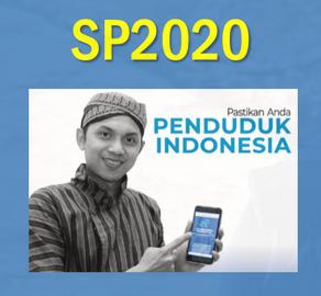 Sensus Penduduk tahun 2020
