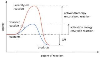 pengaruh katalis terhadap laju reaksi