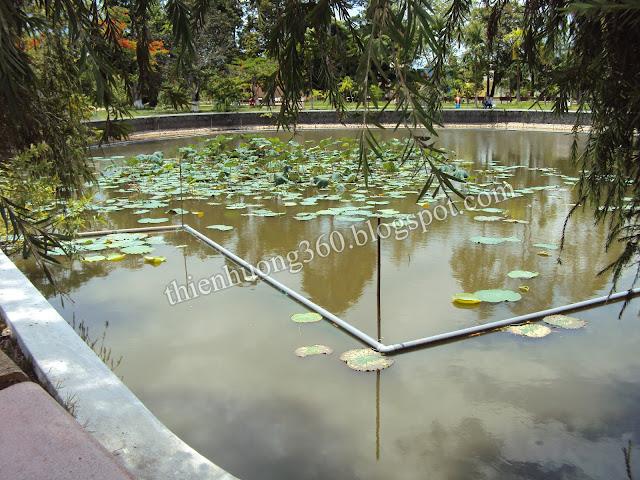 Ao sen ở Nhà sàn Bác Hồ được xây dựng theo bản đồ hành chính tỉnh Đồng Tháp