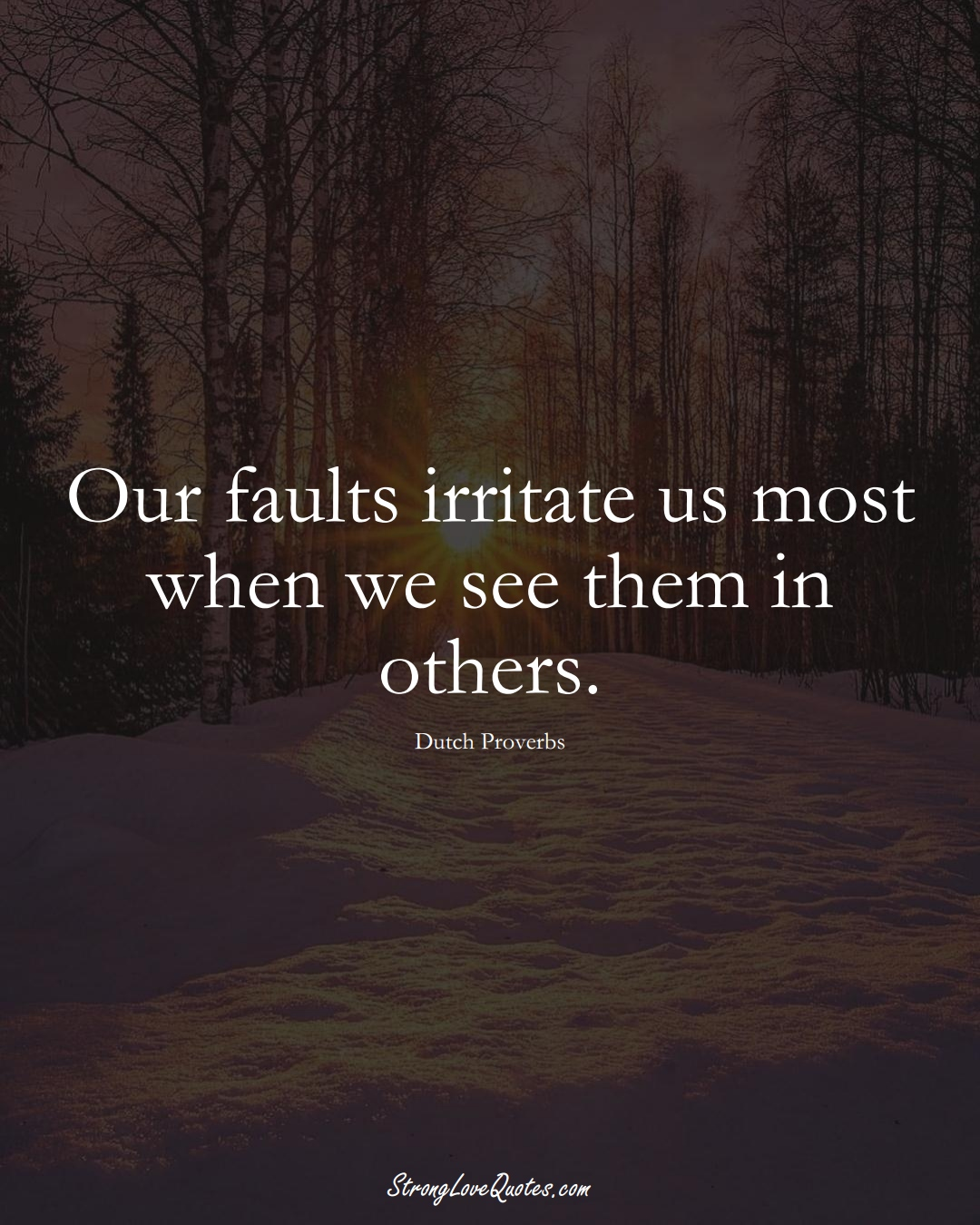 Our faults irritate us most when we see them in others. (Dutch Sayings);  #EuropeanSayings