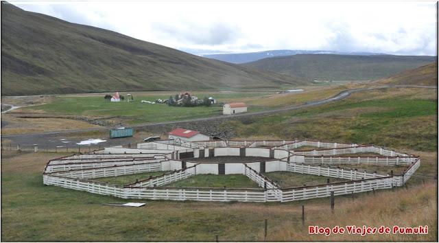 Corrales o rettir para guardar el ganado en invierno en Islandia.