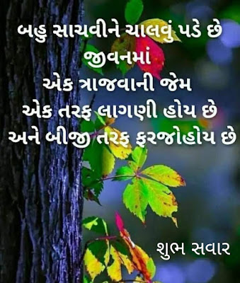 Gujarati Good morning Images with Quotes Suvichar For WhatsApp Status