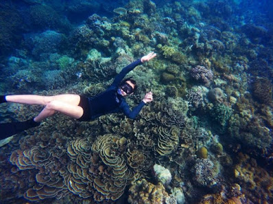 Diving and Snorkling