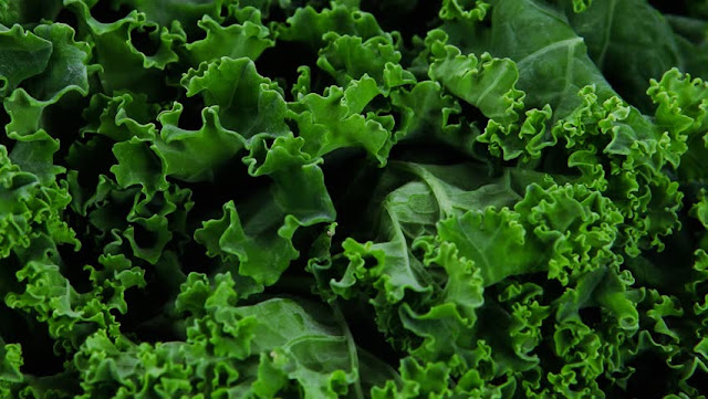 kale for glaucoma