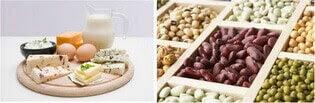 süt ürünleri ve fasülye