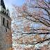 المواعيد الصلاة والخدمات بالكنيسة